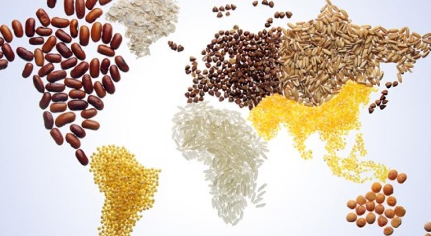 Artigo: Alimentar o mundo