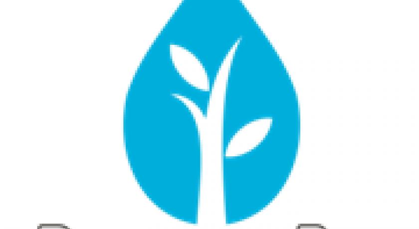 Usina da São Martinho é a primeira produtora de etanol certificada no RenovaBio