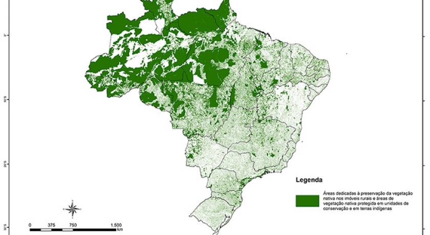 Embrapa Territorial (SP): Área rural dedicada à vegetação nativa atinge 218 milhões de hectares