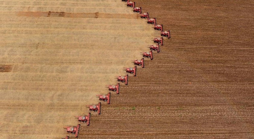 Em defesa da agricultura: vamos comer o quê?