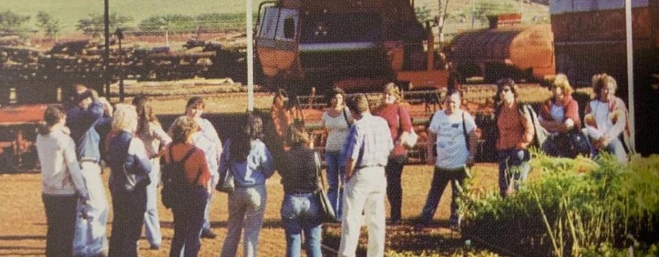2002: De Projeto Piloto a Programa