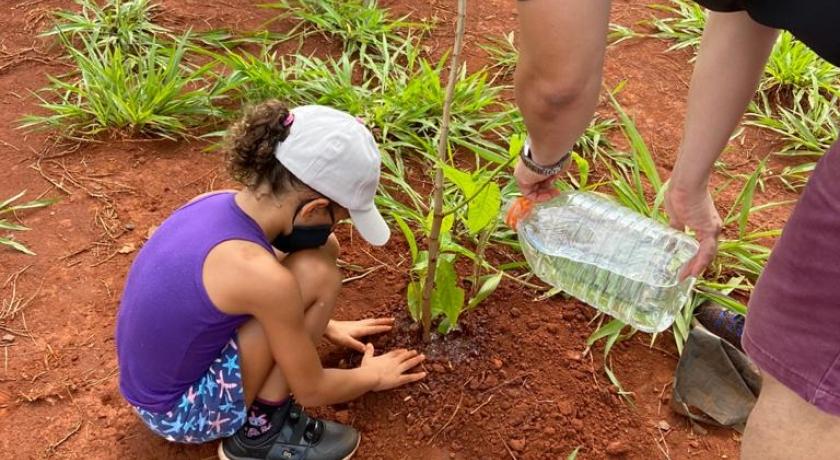 Campanha de Conscientização, Prevenção e Combate aos Incêndios de 2020 foi encerrada com doação de mudas de árvores nativas da região.