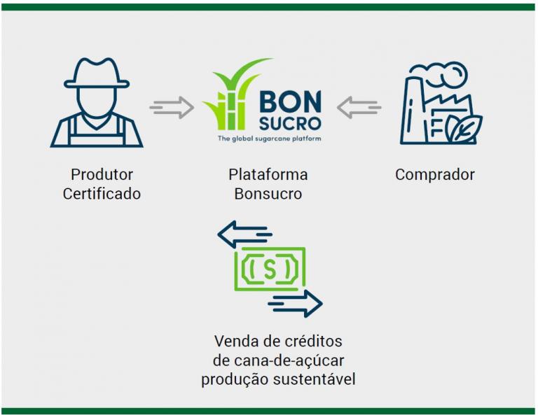 A primeira venda destes créditos pela plataforma da Bonsucro pode abrir um novo caminho para a valorização dos produtores.